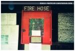 Firehorse, Camp Privcy, Hancock MA,Aug12