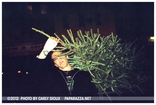 Conor and the Xmas Tree, Williamsburg