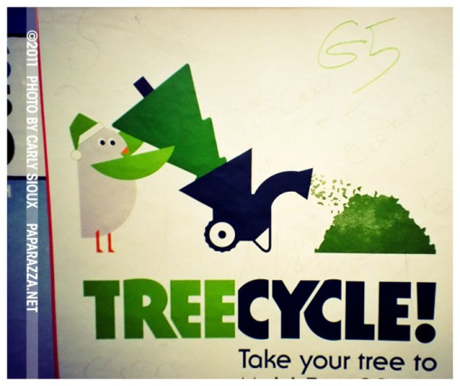 TreeCycle-ClintonHill