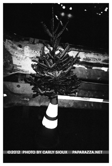 Xmas Tree, Caution, Williamsburg
