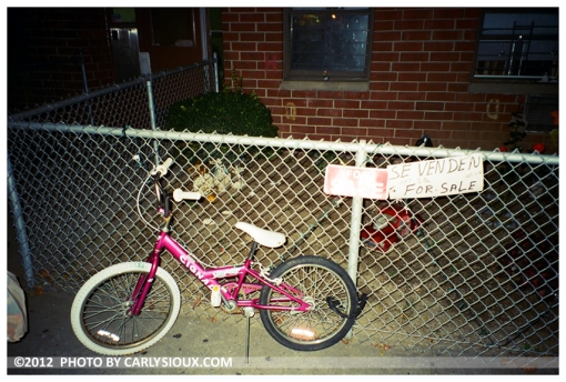 Pink Bike, BushLick, Oct12