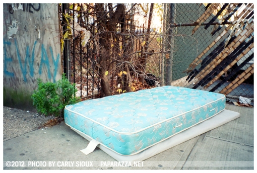 Blue Bed, Fort Green