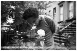 Hue, roses, Clinton Hill,Aug12