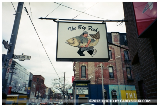 The Big Fish, Toronto Nov 12