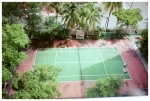 Jungle, Court, Isla Verde,May13