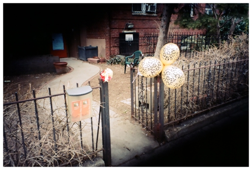 Party, Balloons, Leopard Print, Clinton Hill, Uninvited, Mar13
