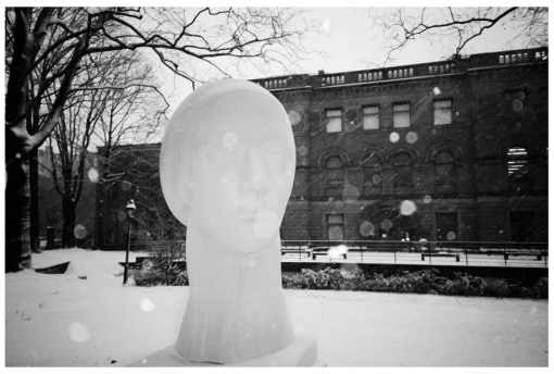 Blizzard, Pratt, Sculpture, Clinton Hill, Feb13