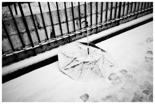 Umbrealla, Snow Blanket, Blizzard, Clinton Hill, Feb13