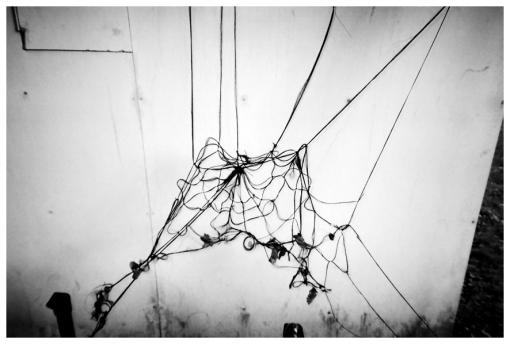 Witchy 2, Web, Creepy, Pratt May 13