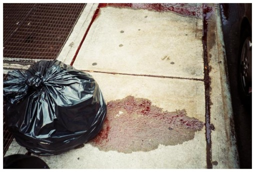 Blood, Garbage, Fulton St, Clinton Hill, Jul13