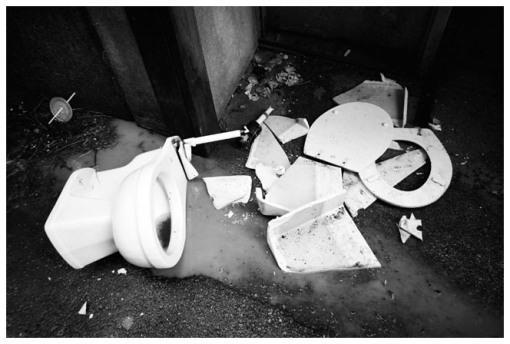 Broken porcelain , Gold Coast, CHI, July13