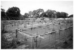 Marvin's Farms, Skeleton,Jun13