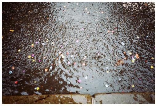 Raining Glitter Stars, Flatiron, Jul13