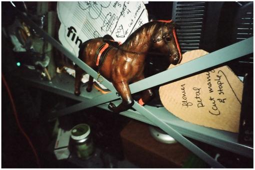 Horses @ Silent Barn, Oct13