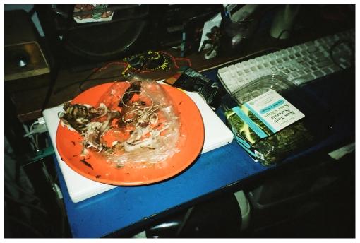 Chicken Bones, Danny, LES, copy