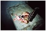 dead barbies @ Newsonic,oct136