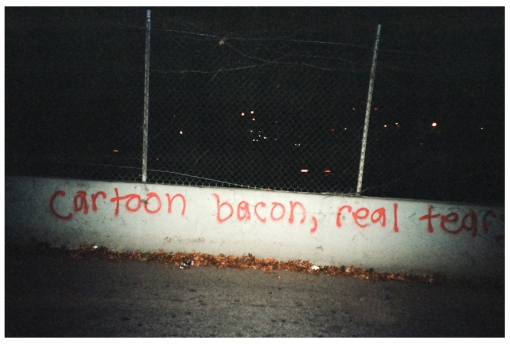 Cartoon Bacon, Real Tears, Williamsburg BQEW, Nov13
