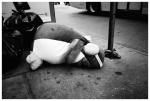Childhood Shattered, Flatiron,Jun13