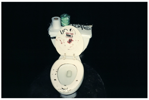 Toilet, Unknown, Jan14