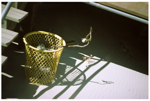 Trash, Far Rock away, Expired Film, Apr14