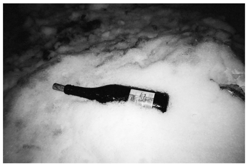 Chilled Wine, Snow, Clinton Hill mar14