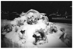 Mountains of Snow Trash, Clinton Hill,Mar14