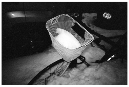Snow, Bike, Basket, Clinton Hill, Mar14