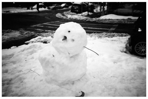 Snow man, clinton Hill, Mar14