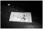 Soiled Paper Towl, Clinton Hill,Jul14