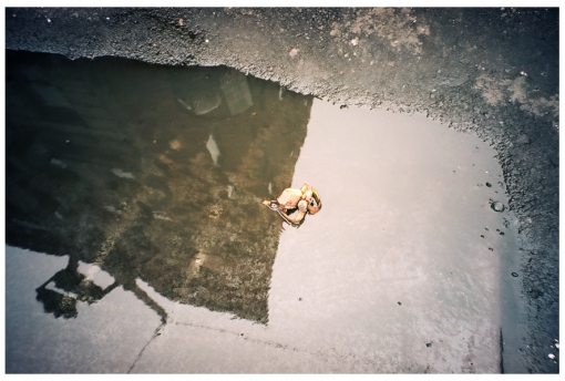 Banana Peel in a Puddle, LES, May14