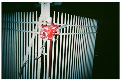 red Bow, White Fence Bushwick May14
