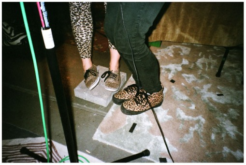 Wild Bore, Leopard Print, SpeakerSonic