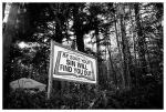Sins in the Woods, Nov14