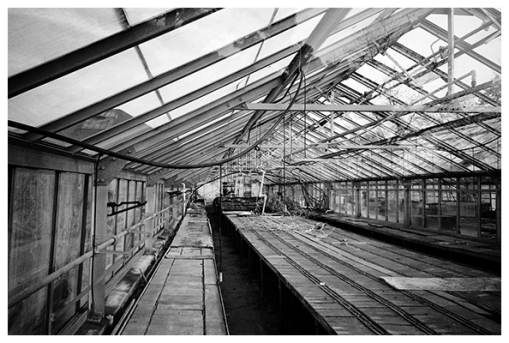 Baren, Hollow, Empty Belle Isle Conservatory, Dt Mar15
