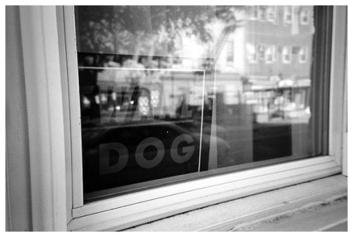 Ware Dog, Clinton Hill, May15