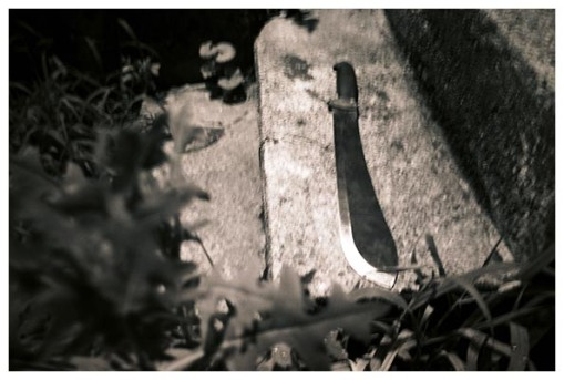 Mark's machete, Oregonia, July15