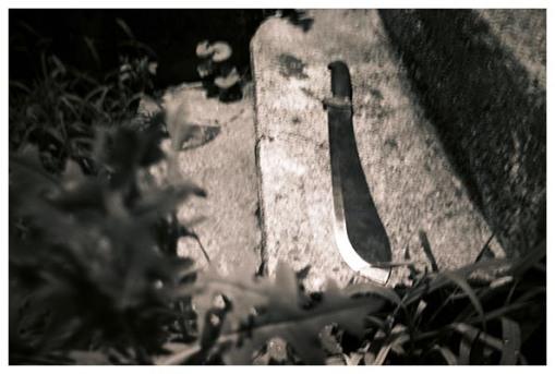 Mark's machete, Oregonia, July15
